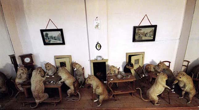 Walter Potter preparátum múzeum