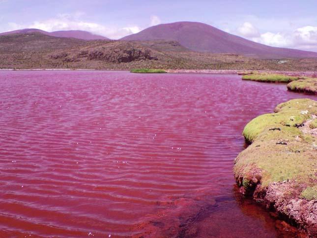 Vörös lagúna, Chile