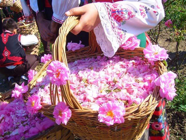 Rózsafesztivál Bulgáriában