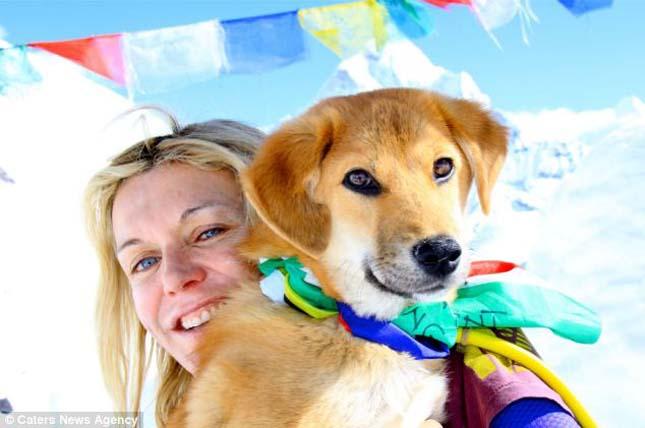 Rúpia, a hegymászó kutya