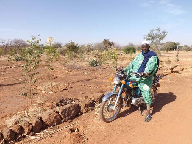 Yacouba Sawadogo