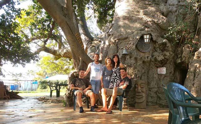 Sunland Baobab