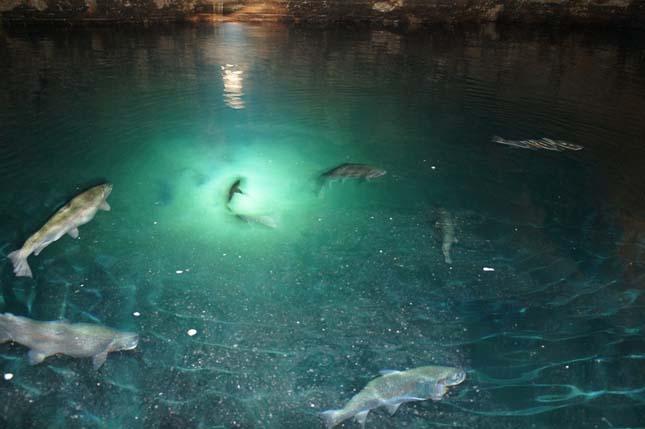 Európa legnagyobb föld alatti tava