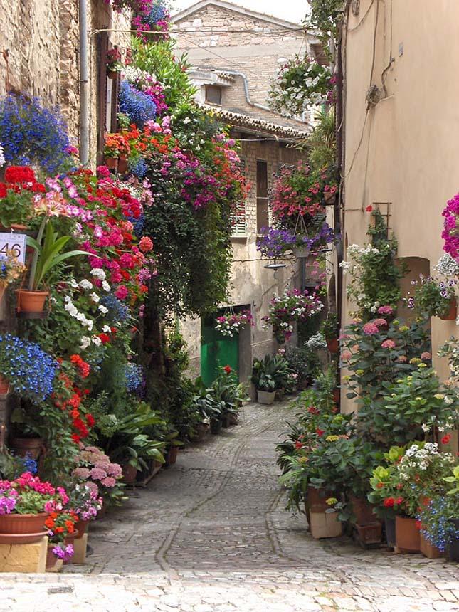 Színes utcák