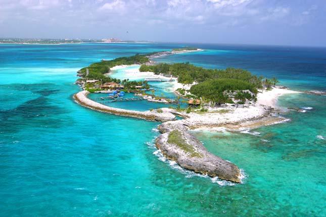 Bahamák delfinjei
