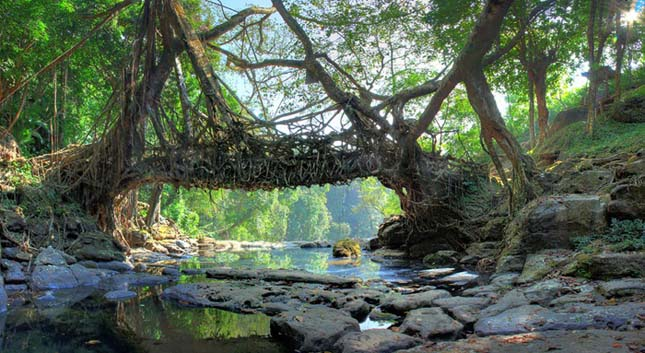 Természtes hidak, India