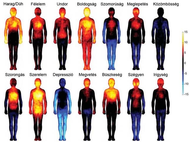 Érzelmi testtérkép