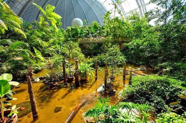 Fedett trópusi üdülő Németországban