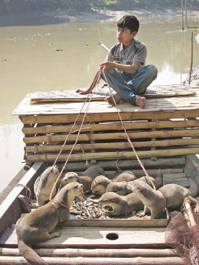 Banglades vidrás halászai