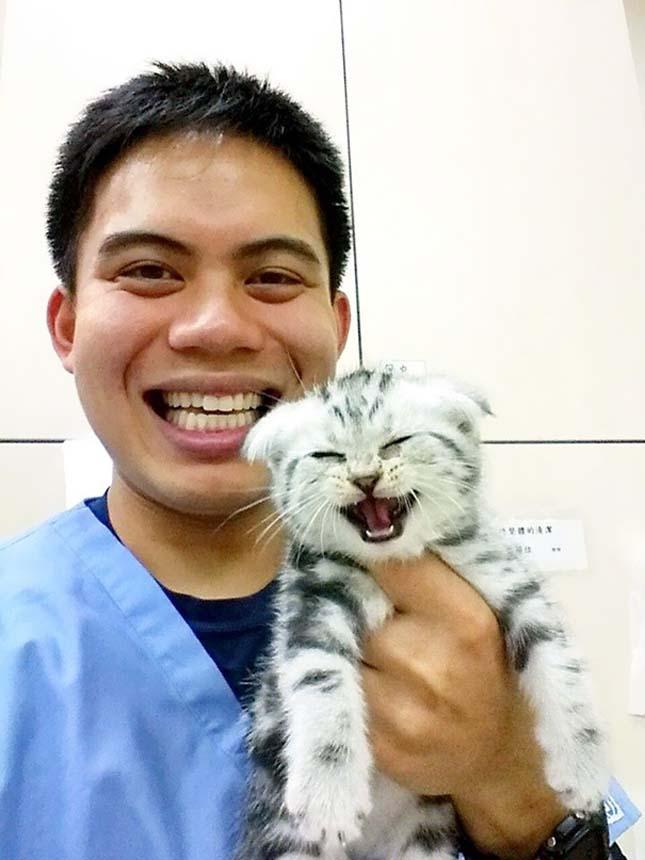 Vidám pillanatok az állatorvosnál
