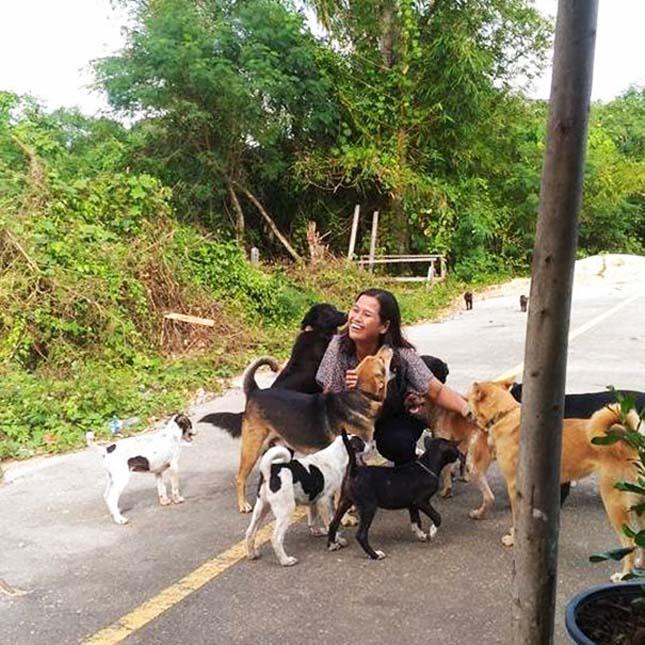 Ajándékokkal kedveskedik a kóbor kutya az őt etető nőnek