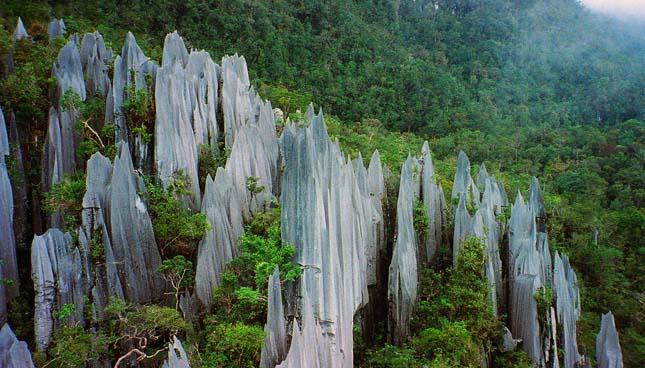 Gunung Mulu Nemzeti Park