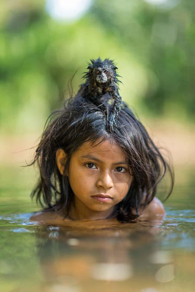 2016 legiobb fotói a Nat Geo válogatásában