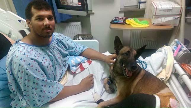 Együtt lábadozik a katona és kutyája