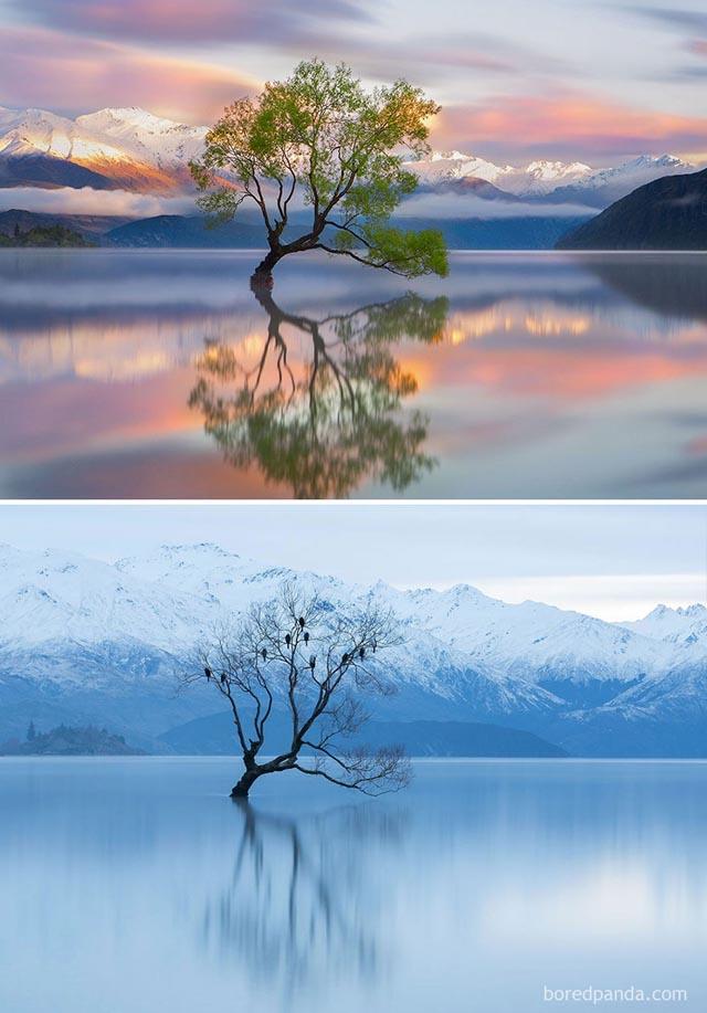 Wanaka-tó, Új-Zéland