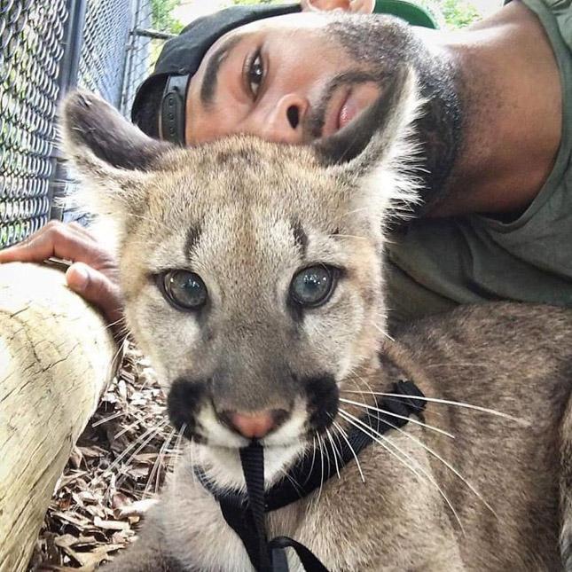 A vadállatok legjobb barátja