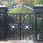 Alnwick Poison Garden – a világ legmérgezőbb kertje