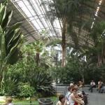 Botanikus kert és vasútállomás egyben – az Atocha Pályaudvar