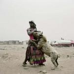 A nigériai hiéna szelídítők