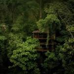 Finca Bellavista – lombházak a gyönyörű Costa Rica-i esőerdőben