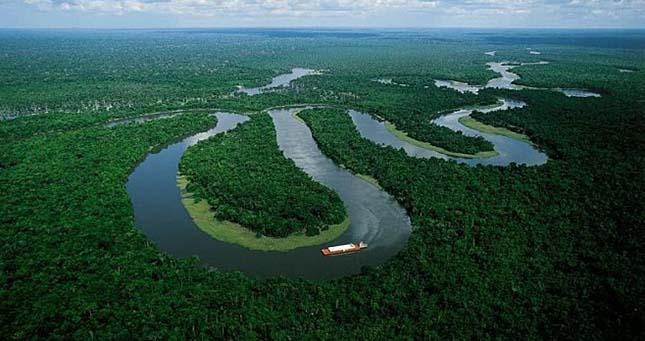 Amasonas esőerdő