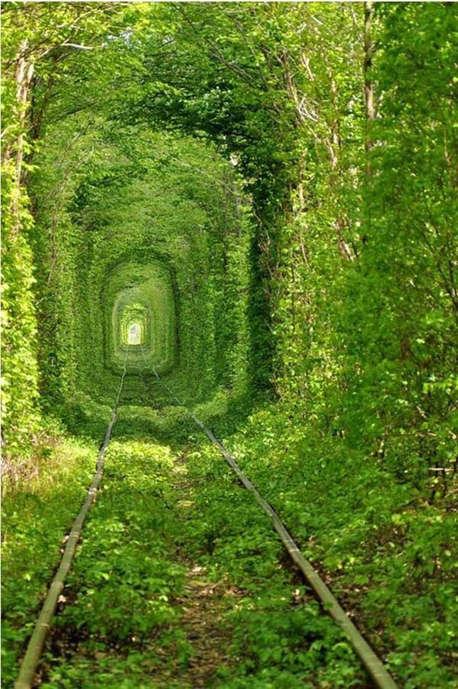 Tunnel of Love, élő alagút, Klevan, Ukrajna