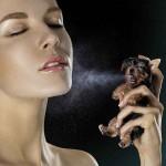 Az EU betiltotta a kozmetikai célú állatkísérleteket