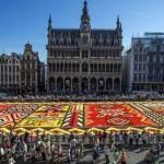 Hatalmas virágszőnyeg Brüsszelben