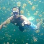 Medúza-tó Palau-szigetén