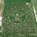 Hatalmas kukorica labirintusok