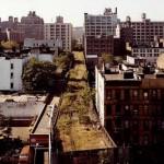 Park a New York-i magasvasút helyén