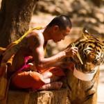 A lélegzetelállító Tigris Templom