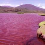A chilei Vörös lagúna