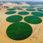 Szokatlan kör alakú mezőgazdasági földek