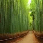22 gyönyörű természeti csoda, amit látni kell