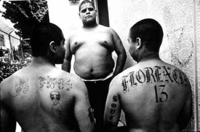 Mexikói maffia