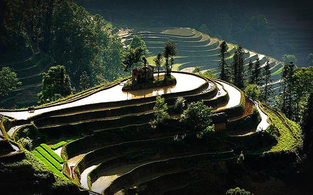 Rizsföldek – Yuanyang, Kína