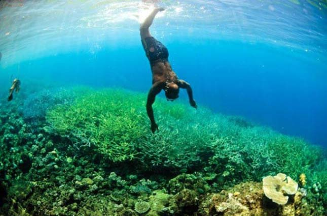Solomon-Islands1-630x459-620x451