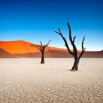 Deadvlei – a halott mocsár Namíbiában