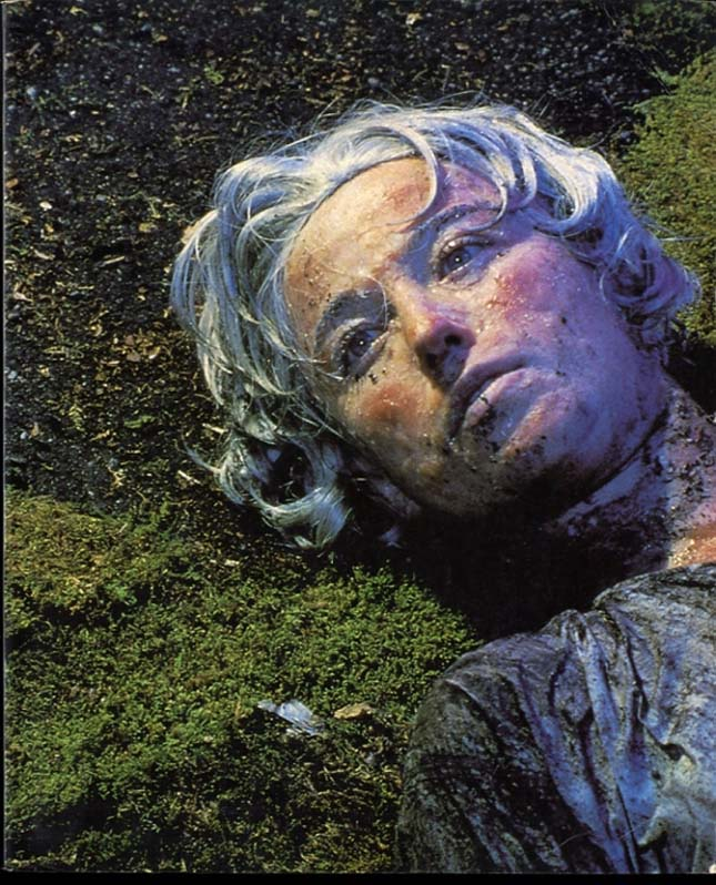 Cindy Sherman - Untitled #153