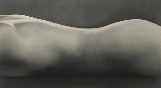 Edward Weston - Nude