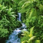 7 eltűnőben lévő természeti csoda