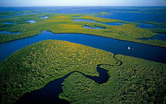 Everglades Nemzeti Park