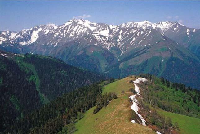 Kaukázus Természetvédelmi Terület