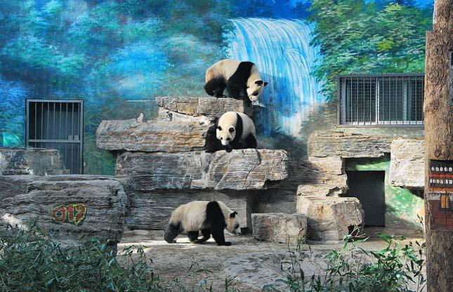 Pekingi Állatkert