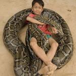 Egy hatalmas piton egy 7 éves kambodzsai kisfiú legjobb barátja