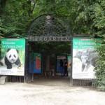 Ismét a Schönbrunni Állatkert lett Európa legjobb állatkertje