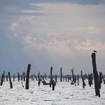 Volta-tó – a világ legnagyobb mesterséges tava