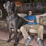 A nagyobb kutyák rövidebb életűek