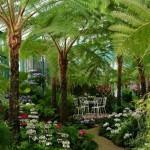 A belga királyi palota lenyűgöző botanikus kertje